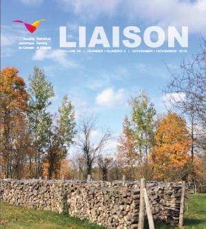 Liaison-29-4